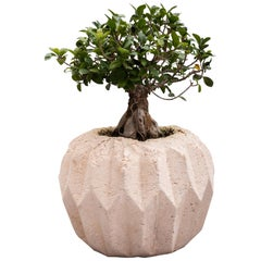 """Pulp"" Contemporary Planter by Studio Morison for General Life"