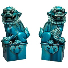 Qing Dynasty Pair of Foo Dogs or Guardian Lions