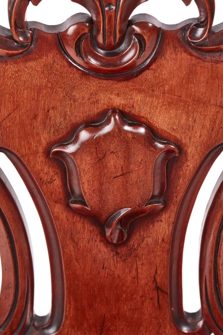 Quality Pair of William IV Mahogany Hall Chairs For Sale 1