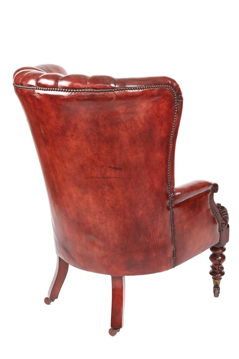 Quality William IV leather barrel back library chair, having a fantastic quality chestnut color leather barrel back, lovely quality mahogany carved arms, serpentine seat, standing on turned shaped tulip legs to the front outswept back legs, original