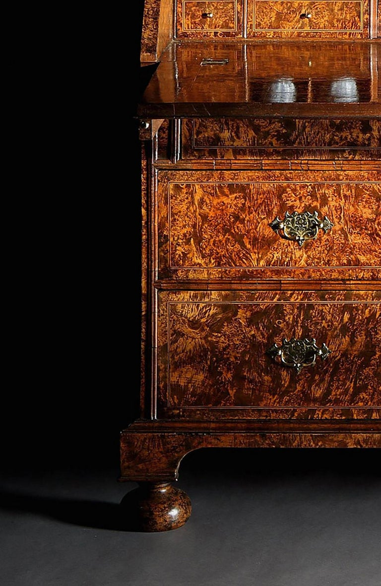 """18th Century Queen Anne Stained Field Maple """"Mulberry-Wood"""", Bureau-Cabinet For Sale"""