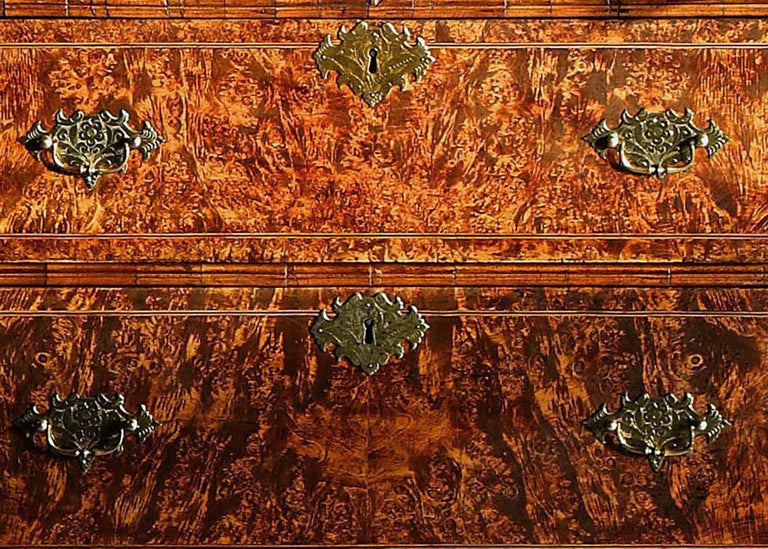 """Queen Anne Stained Field Maple """"Mulberry-Wood"""", Bureau-Cabinet For Sale 1"""
