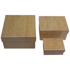 R & Y Augousti Reptile Skin Boxes
