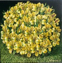 Alstroemeria Yellow Lilys Still Life