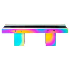 Rainbow Color Stainless Steel HOT Bench Medium Length by Studio Buzao