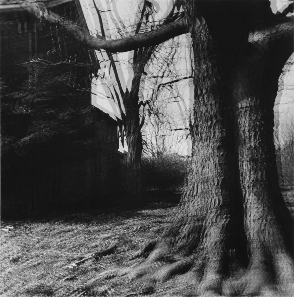 "Untitled (""Motion-Sound"" Landscape)"