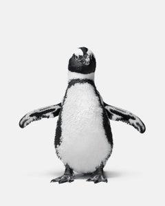 Penguin No. 1
