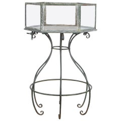 Rare 19th Century Aquarium on Wrought Iron Stand