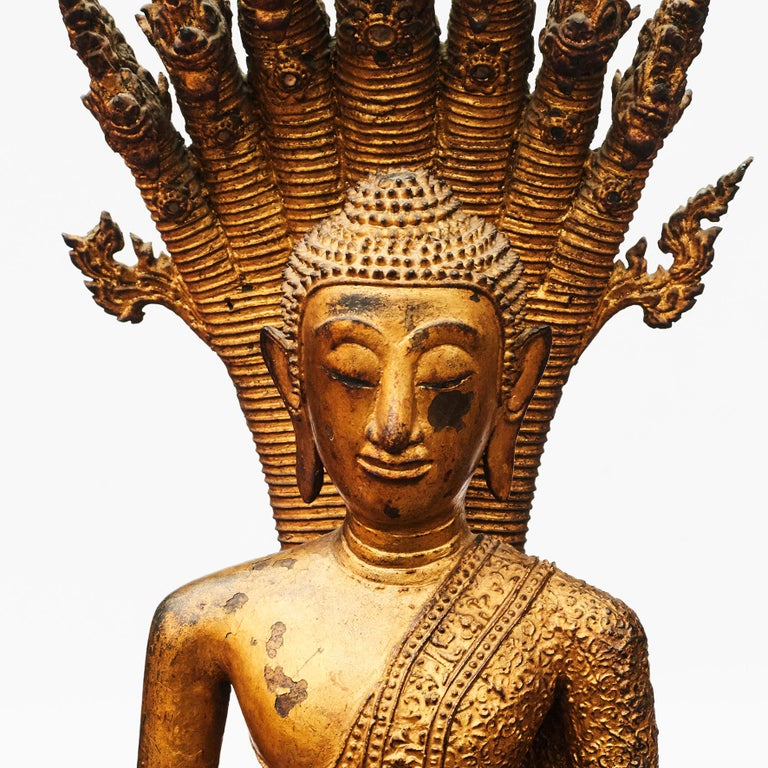 Rare bronze Buddha depicted in meditation pose sheltered by a Naga (a seven-headed snake). Naga's body coiled up to serve as a cushion for the Buddha with 7 pronged head providing a hood over the Buddha's head as a cover.  Original condition,