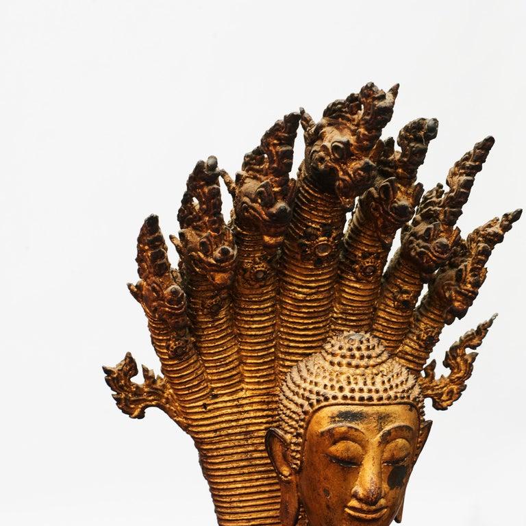 Gilt Rare 19th Century Bronze Naga Buddha Statue For Sale