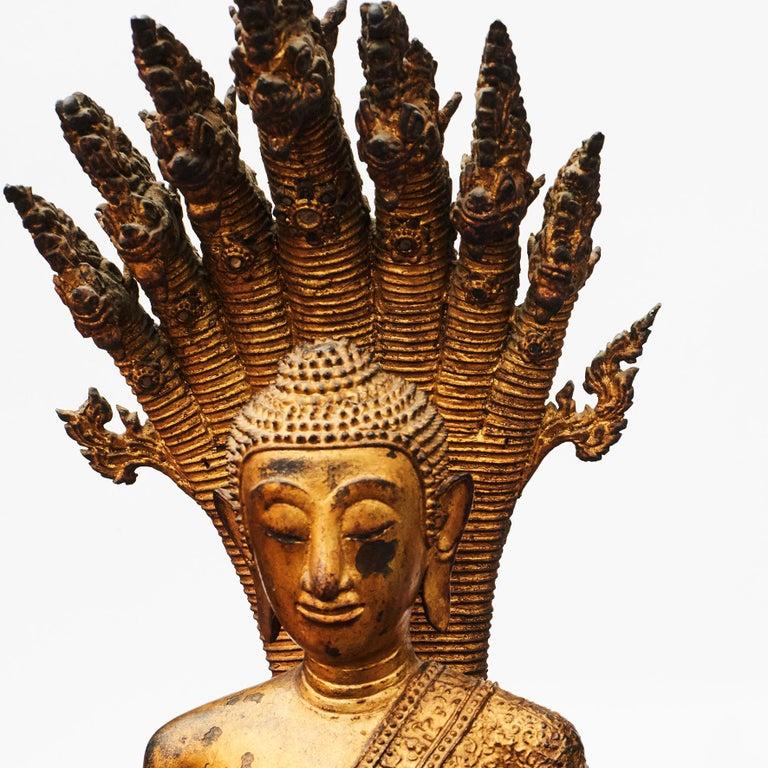 Rare 19th Century Bronze Naga Buddha Statue In Good Condition For Sale In Nordhavn, DK