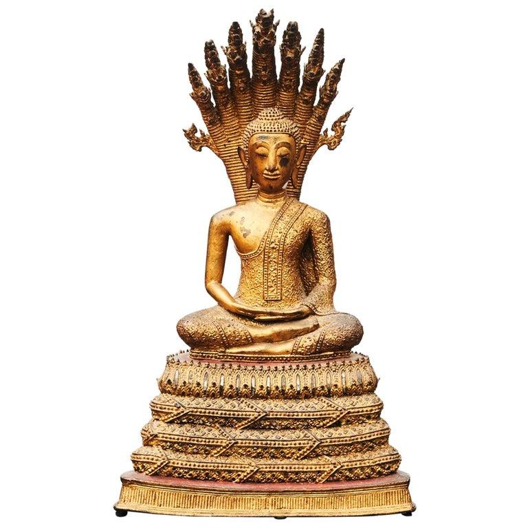 Rare 19th Century Bronze Naga Buddha Statue For Sale