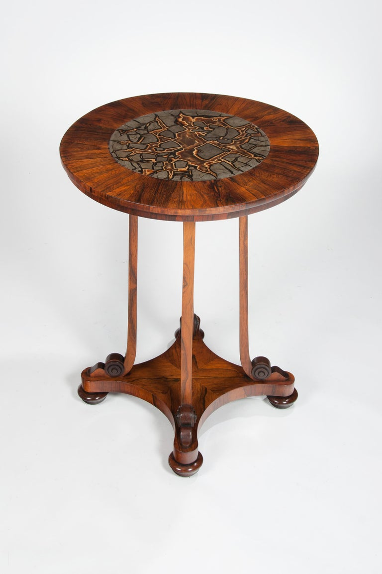 Rare 19th Century William IV Turtle Stone Marble Top Specimen Table In Good Condition For Sale In Benington, Herts