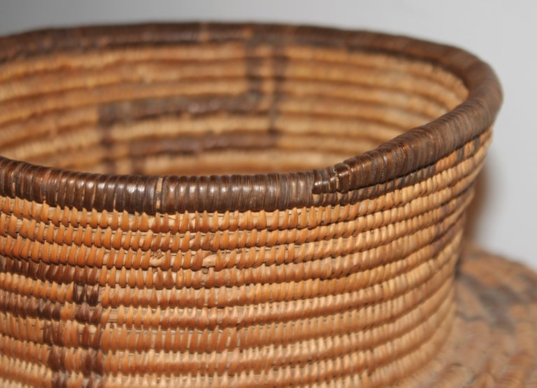 Adirondack Rare 19th C Apache Indian Pictorial Basket Olla For Sale