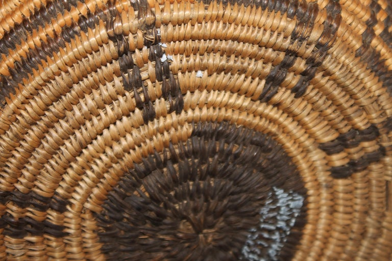 Rare 19th C Apache Indian Pictorial Basket Olla In Good Condition For Sale In Los Angeles, CA