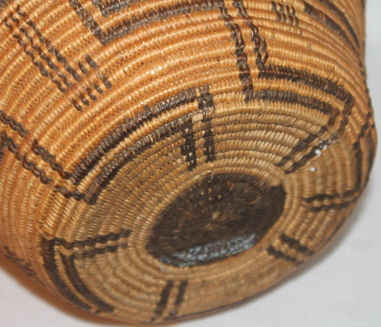 19th Century Rare 19th C Apache Indian Pictorial Basket Olla For Sale
