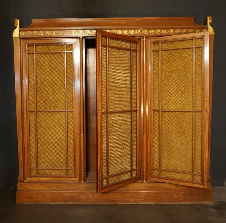 Hollywood Regency Rare and Magnificent Neoclassical Mahogany Bibliotheque Bookcase For Sale
