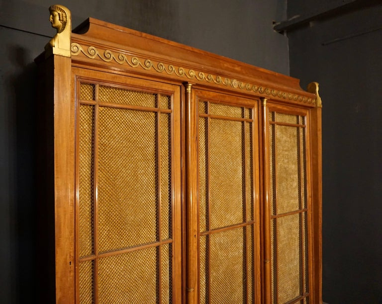 Brass Rare and Magnificent Neoclassical Mahogany Bibliotheque Bookcase For Sale