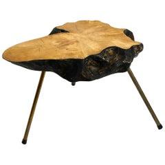 Rare, Beautiful Midcentury Three-Legged Coffee Table Made of Thick Tree Slice