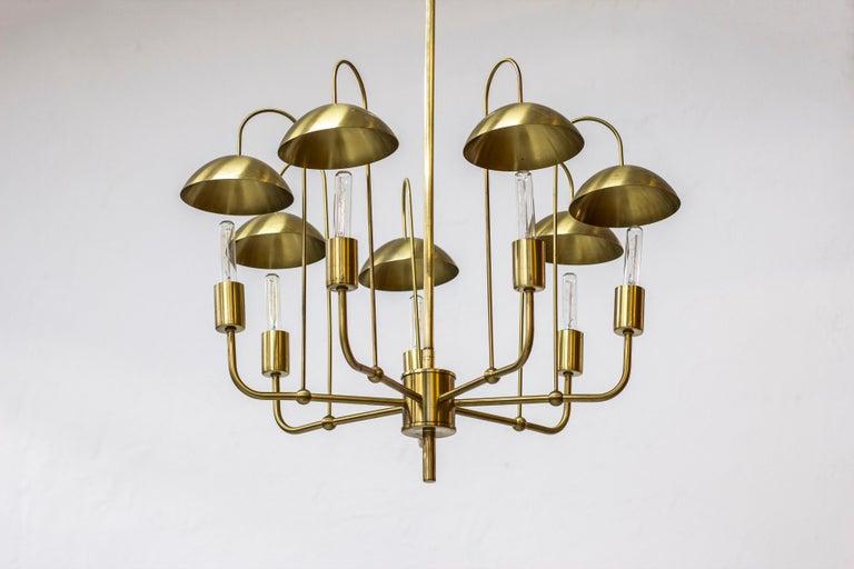 Rare chandeliermodel