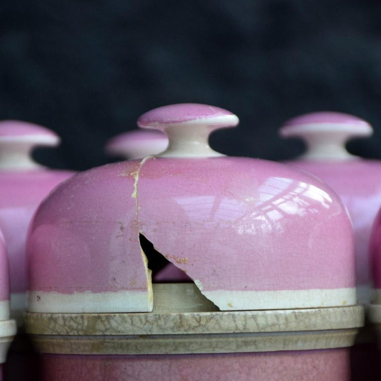 Rare Collection of Puce Pink Ground Porcelain Apothecary Jars, circa 1880 4