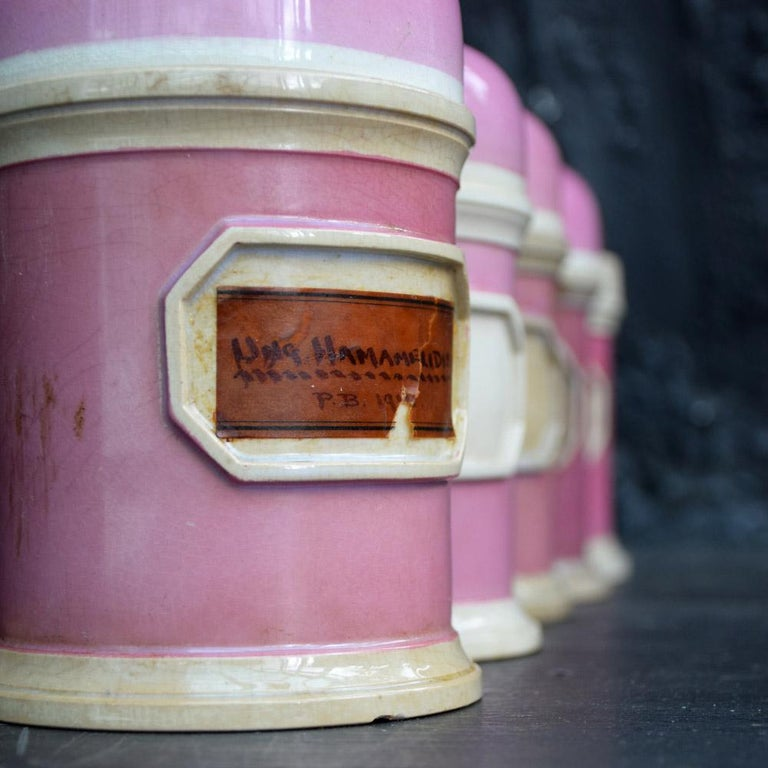 Rare Collection of Puce Pink Ground Porcelain Apothecary Jars, circa 1880 8