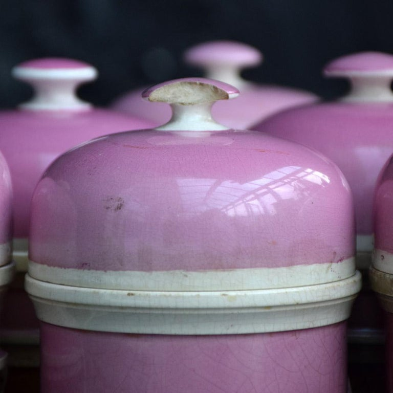 Rare Collection of Puce Pink Ground Porcelain Apothecary Jars, circa 1880 9