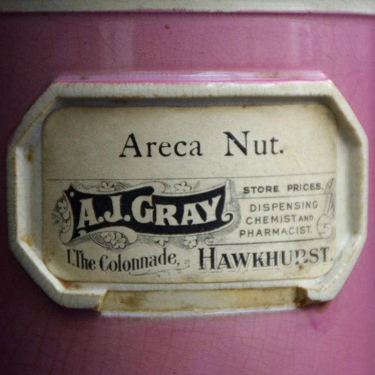 British Rare Collection of Puce Pink Ground Porcelain Apothecary Jars, circa 1880