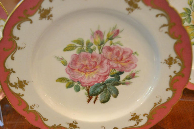 Rare Early 19th Century Paris Botanical Pink Porcelain Service for 24 For Sale 2
