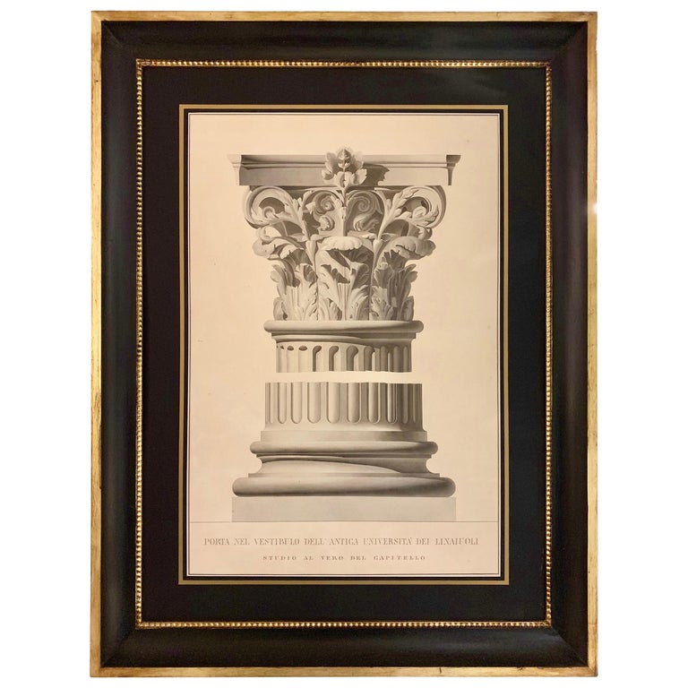 Rare Extra Large Antique Watercolor of a Capital II 'second subject' For Sale