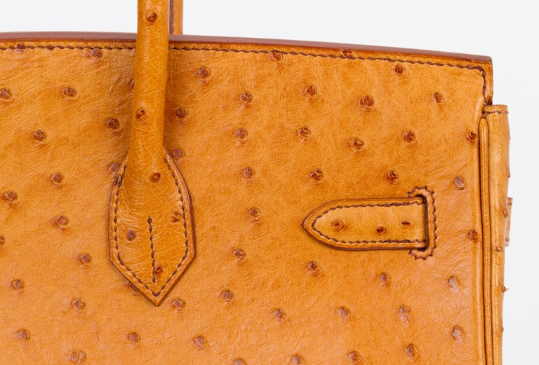 Rare Hermes Birkin 35 Ostrich Sable Gold Bag For Sale 4
