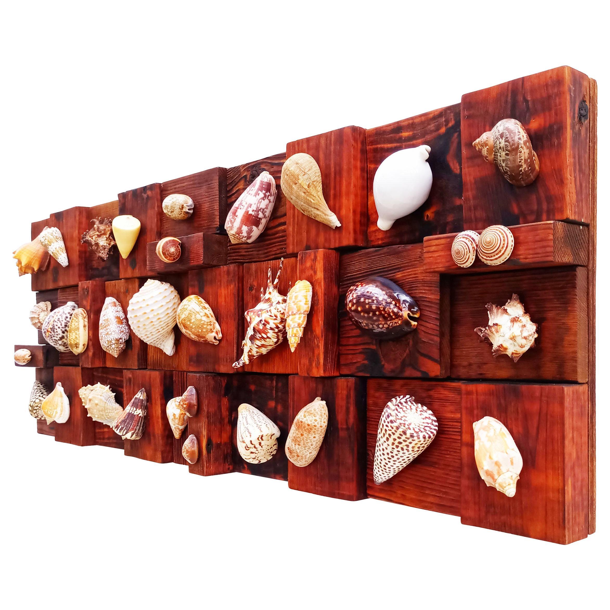 Rare Large 1960s Seashells Wall Sculpture