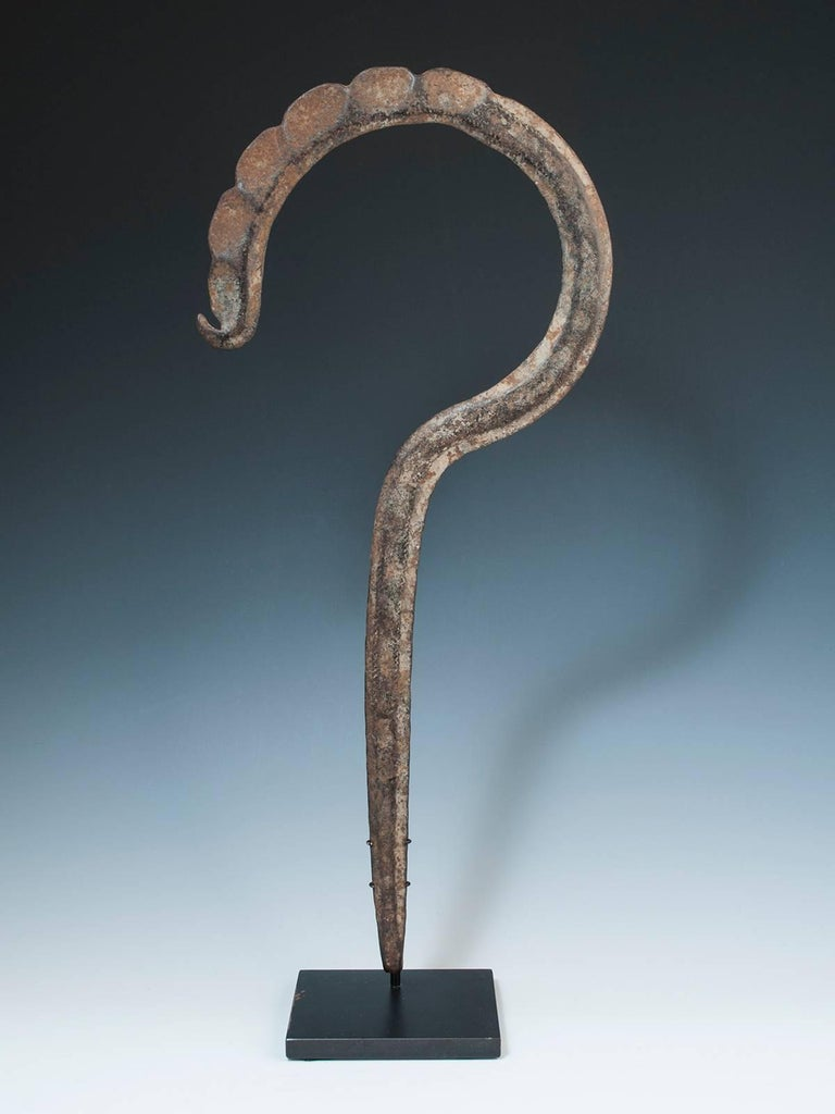 Rare late 19th century Tribal forged iron Hook Currency, Cameroon/ NE Nigeria, upper Banue River area  A graceful forged iron currency piece shaped like a question mark or a fiddle head fern; comes with a custom base.
