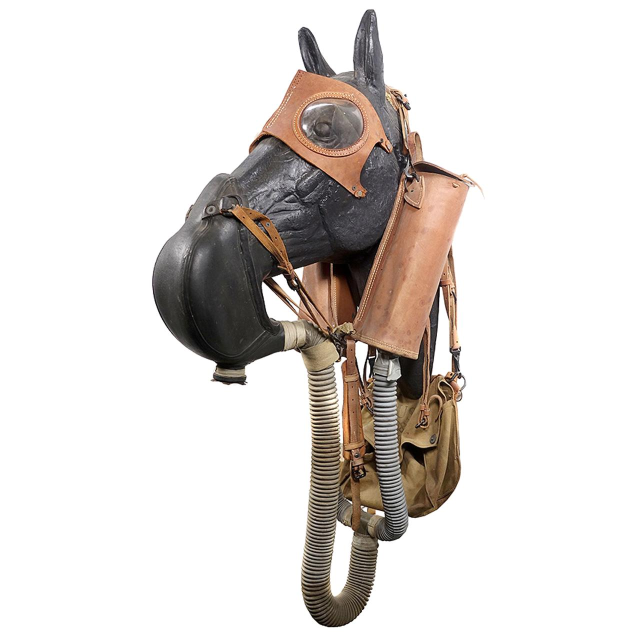 Rare M4 Leather WWII Horse Gas Mask