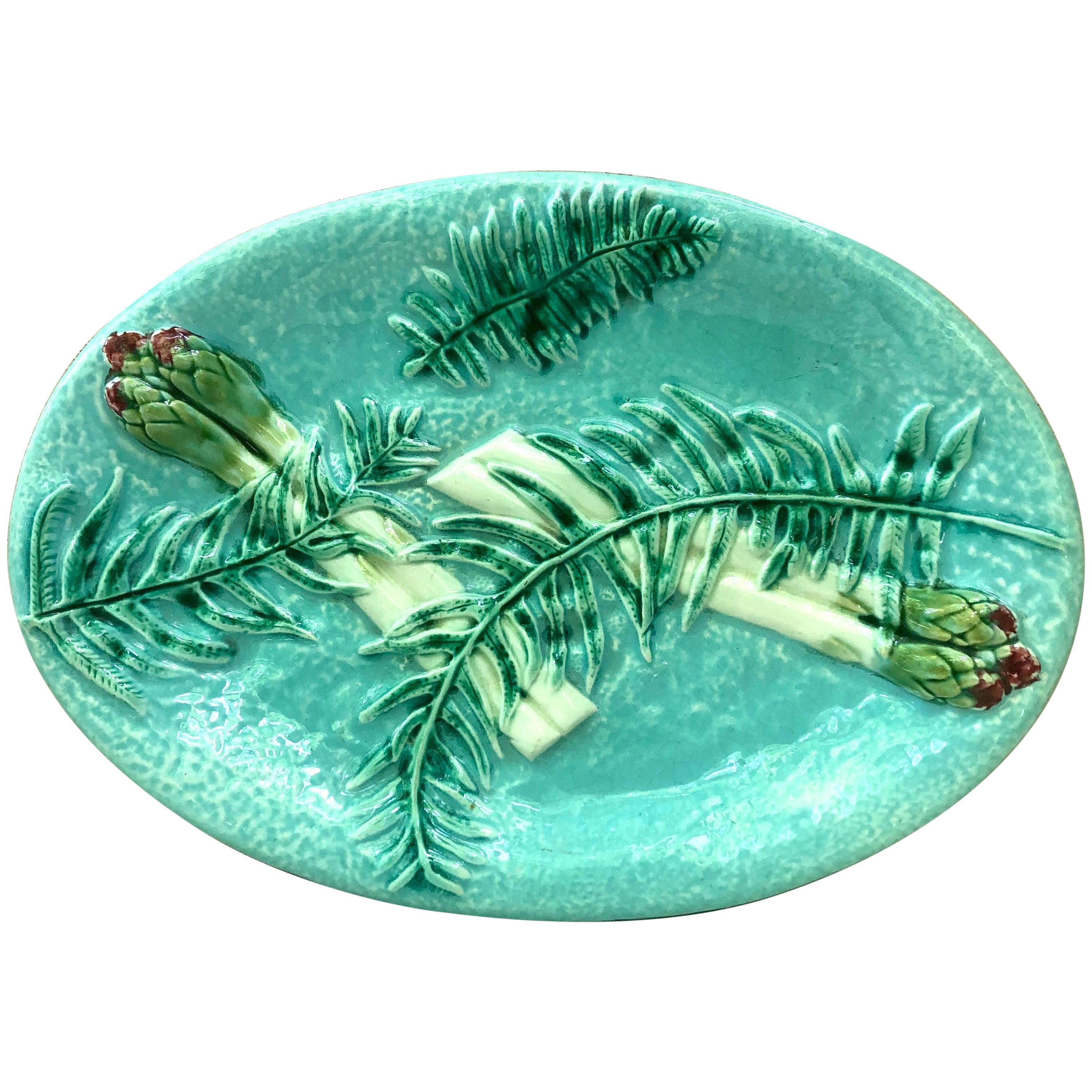 Rare Majolica Asparagus Platter with Fern Clairefontaine, circa 1880