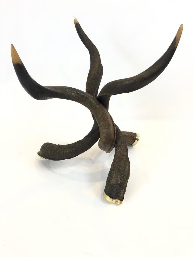 Late 20th Century Rare Organic Handmade Kudo Horn Based Coffee Table For Sale