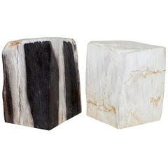 Rare Pair of 180 Million Year Old Pretrified Fossil Wood Bookends Door Stops