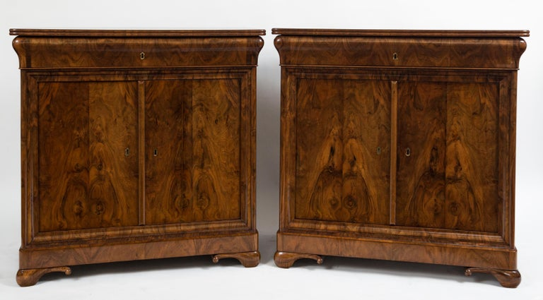 Louis Philippe Rare Pair of Fine French Louis-Philippe Cabinets For Sale