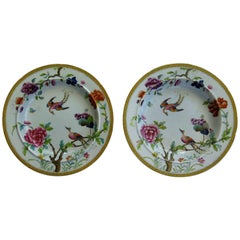 Rare Pair of Stephen Folch Ironstone Soup Plates Oriental Pheasants, circa 1825