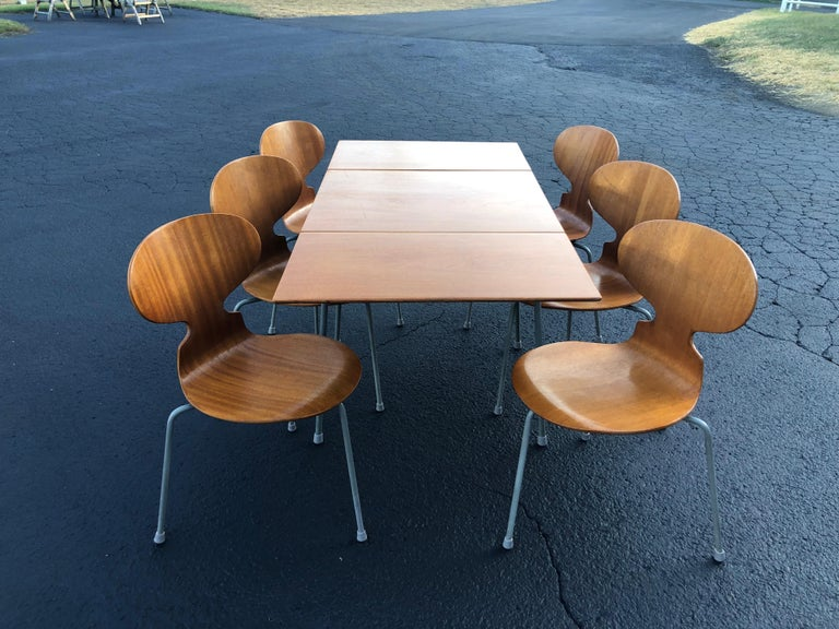 Scandinavian Modern Rare Set of Six Arne Jacobsen Ant Chairs with Drop-Leaf Table For Sale