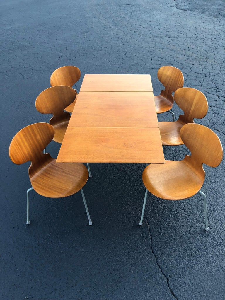 Rare set of six Arne Jacobsen Ant chairs Model #3100 with matching drop-leaf table. Manufactured by Fritz Hansen, 1950s label. Table has custom piece glass top if desired. Small flea bite chip to one corner of glass top. Some veneer has been wood