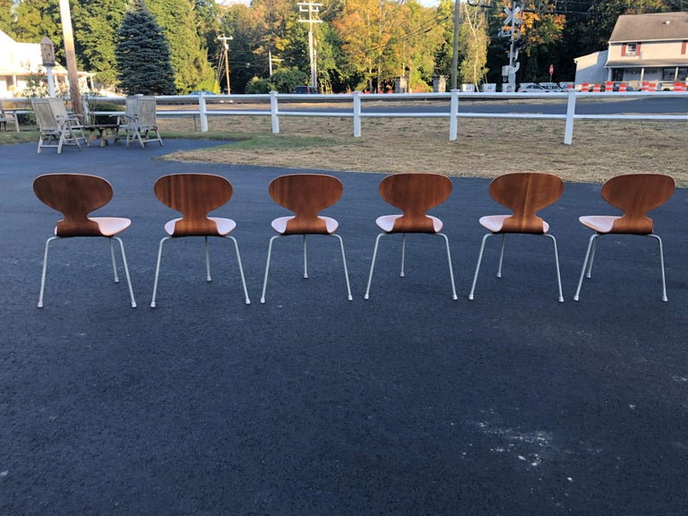 Rare Set of Six Arne Jacobsen Ant Chairs with Drop-Leaf Table For Sale 1
