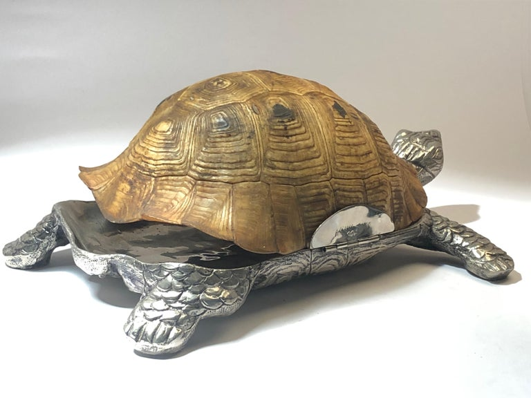 Rare Signed Gabriella Crespi Large Real Turtle Shell Box Silver Sculpture, 1970 For Sale 3