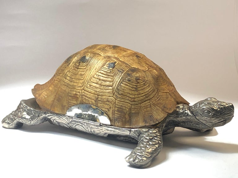 Rare Signed Gabriella Crespi Large Real Turtle Shell Box Silver Sculpture, 1970 For Sale 6
