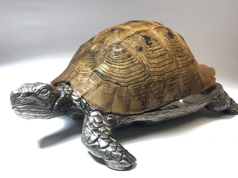 Rare Signed Gabriella Crespi large real turtle shell box combined with silver sculpture.  1970s, made in Italy.   This piece is in near excellent condition with ageing wear on the shell. No estructural damages.  Signed on the hinge.  Please study