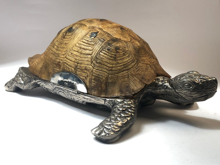 Mid-Century Modern Rare Signed Gabriella Crespi Large Real Turtle Shell Box Silver Sculpture, 1970 For Sale