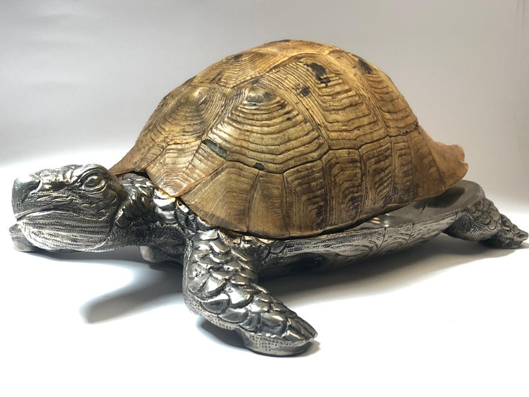 Late 20th Century Rare Signed Gabriella Crespi Large Real Turtle Shell Box Silver Sculpture, 1970 For Sale