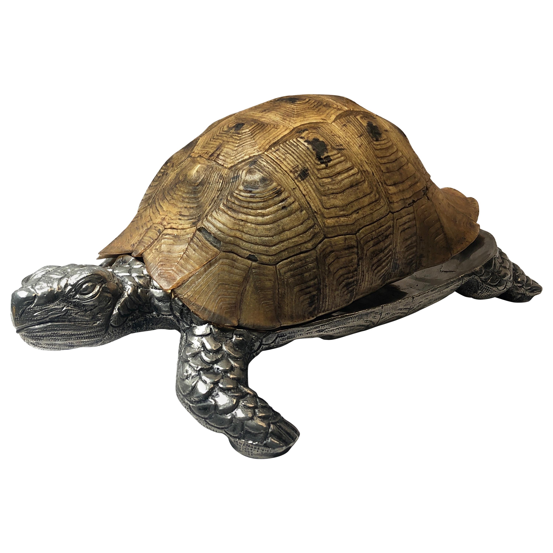 Rare Signed Gabriella Crespi Large Real Turtle Shell Box Silver Sculpture, 1970
