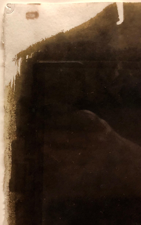 Large Photograph George (Seeing in the Dark Series) Van Dyke Brown Photo Print For Sale 2