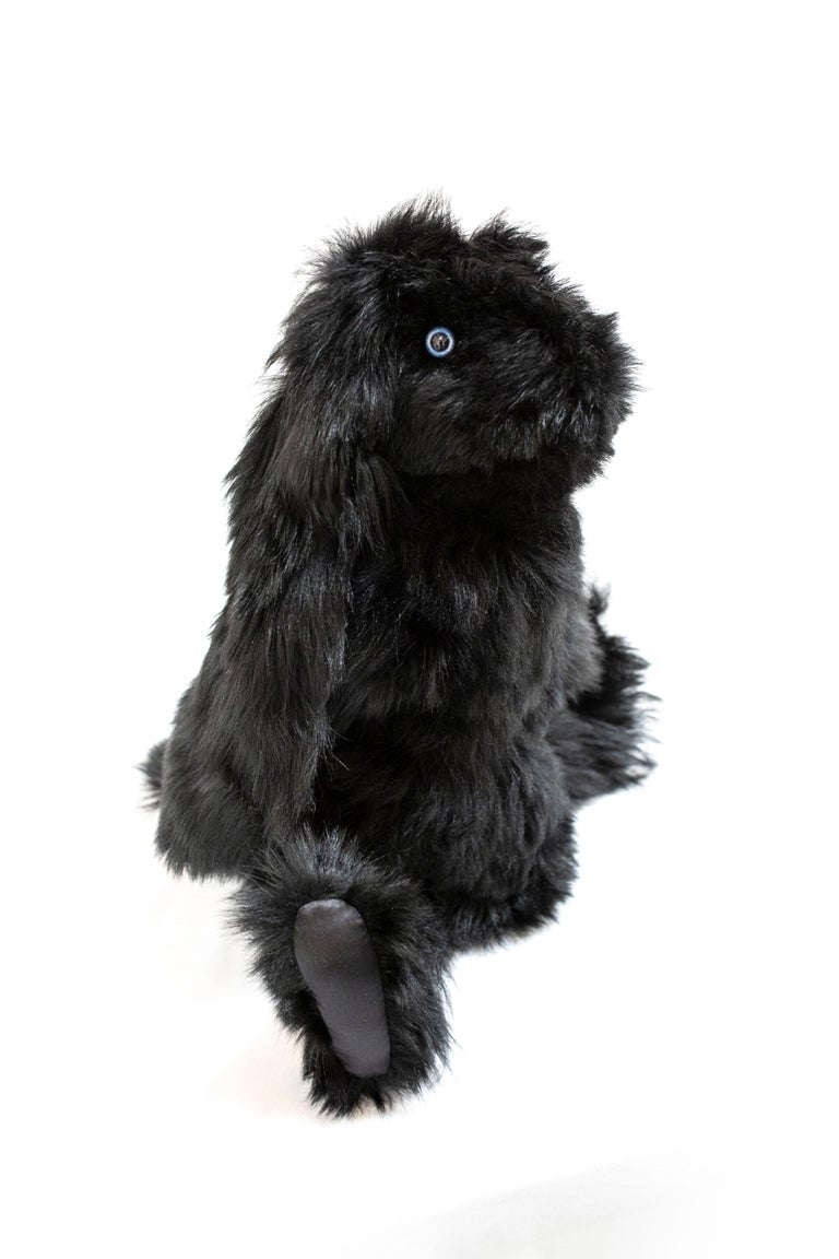 American Real Toscana Sheep Black Fur Rabbit Toy For Sale